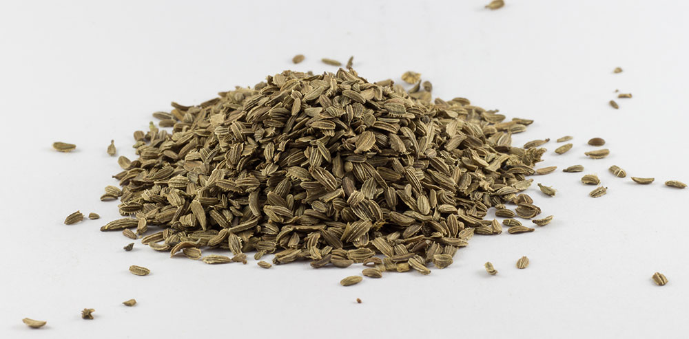 Mrkvové semená